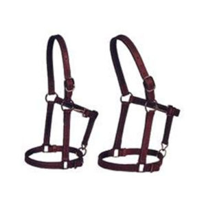Horse-Halters1